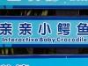 guangzhou-croco-5527