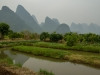yangshuo_fields-7929