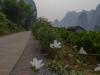 yangshuo_fields-7987