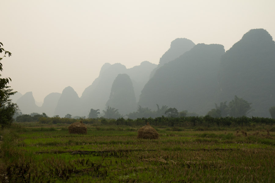 yangshuo_fields-7921