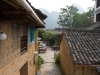 yangshuo_fields2-8045